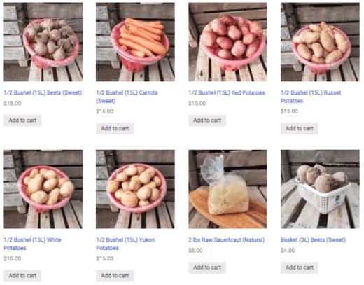 Gmach Gardens Online Store